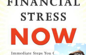 End Financial Stress Now by Emily Guy Birken